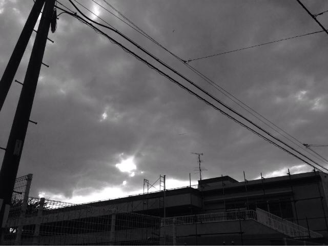 20131015-001952.jpg